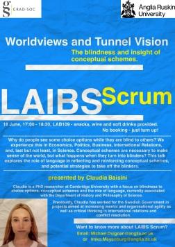 LAIBS Scrum June 2015 - conceptual schemes